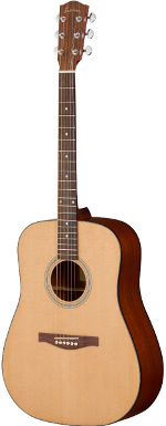 GUITARE ACOUSTIQUE AC120 DREADNOUGHT EN ETUI EASTMAN