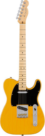 TELECASTER AMERICAN PROFESSIONAL MN BUTTERSCOTCH BLONDE FRENE